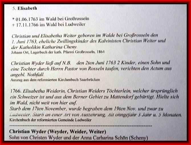 reformiertes kirchenbuch von walsheim